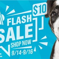 Orange County Animal Services hosting flash sale with $10 adoption fees