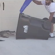 Orlando man traps alligator using only a trash can in viral video