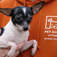 Pet Alliance of Greater Orlando has received nearly $1 million in donations since shelter fire