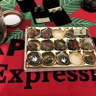 Florida Cannabis Festival returns to Mount Dora in November