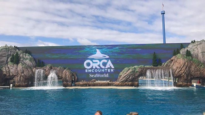 Orca Encounter at SeaWorld San Diego - IMAGE VIA STAND WITH SEAWORLD | FACEBOOK