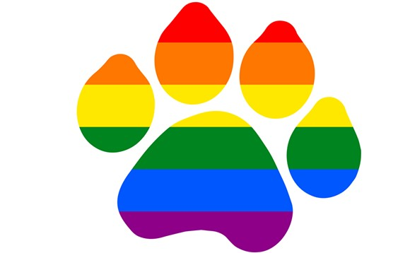 paw_print_rainbow.jpg
