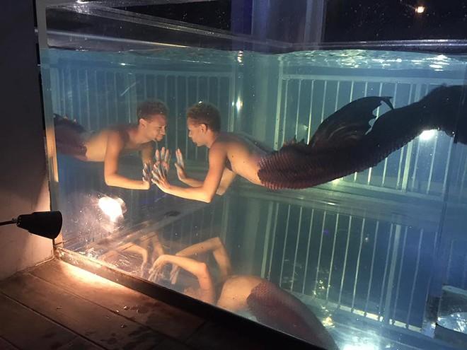 The merman tank at Stonewall - IMAGE VIA STONEWALL BAR ORLANDO/FACEBOOK