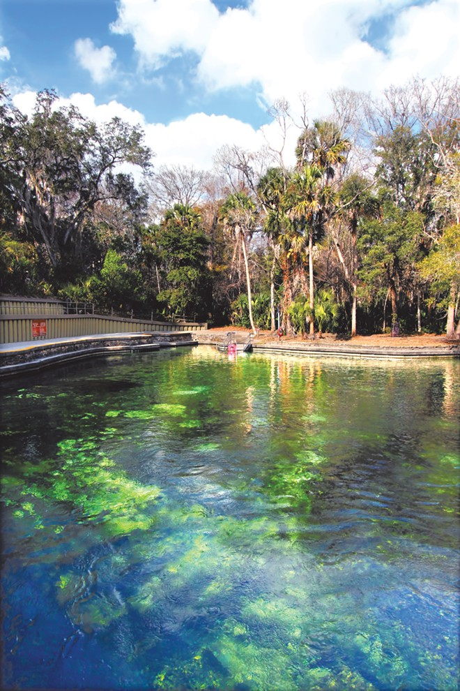 Wekiwa Springs State Park - PHOTO VIA ADOBE STOCK
