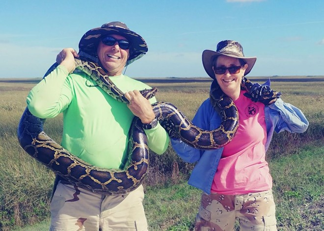 Air Force veteran Dave Mucci won $1,000 for an 11-foot python - PHOTO VIA MYFWC/TWITTER