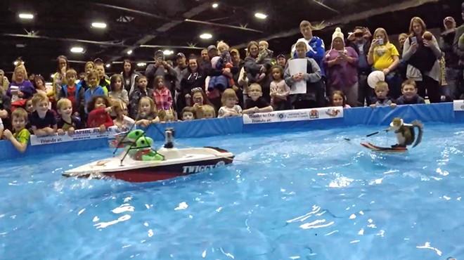 Twiggy water skiing at the 2019 KX Sport Show in Minot, North Dakota - SCREENSHOT VIA TWIGGY, INC./YOUTUBE