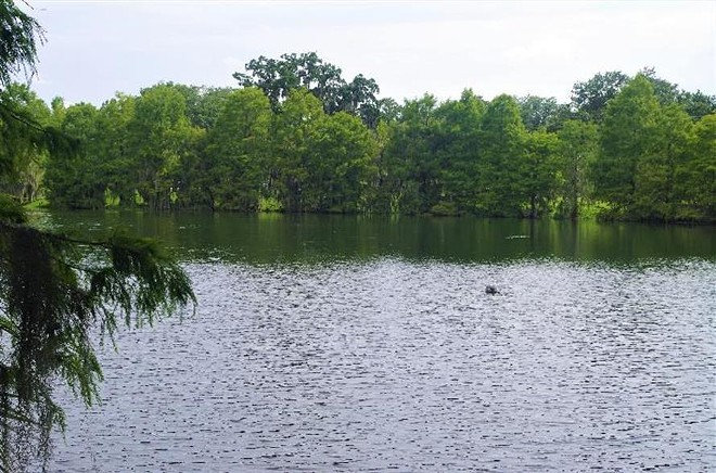 Lake Rowena Park is still unsafe for swimming, - PHOTO VIA CITY OF ORLANDO