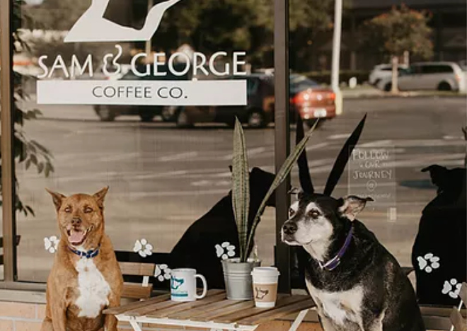 An adoptable dog cafe has plans to open later this year. - PHOTO VIA SAM & GEORGE COFFEE CO.