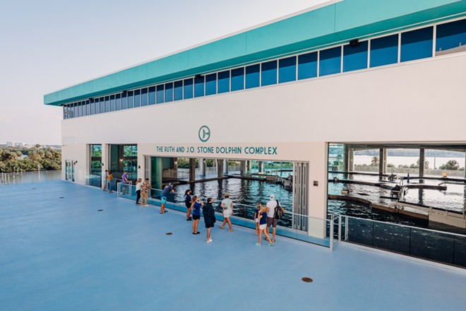 The dolphin complex gives guests views into the dolphin facilities and an elevated view of the aquarium's natural intercoastal surroundings. - IMAGE VIA THE CLEARWATER MARINE AQUARIUM