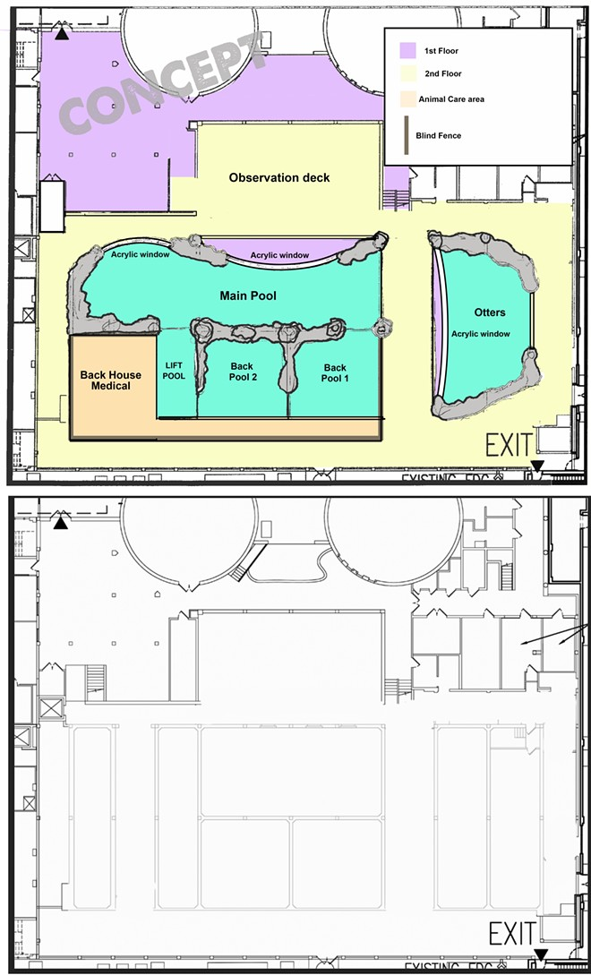 An early concept of the potential layout for the manatee facility at the Clearwater Marine Aquarium. - IMAGE VIA THE CLEARWATER MARINE AQUARIUM