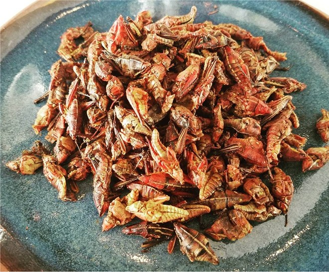 Chapulines (fried grasshoppers)