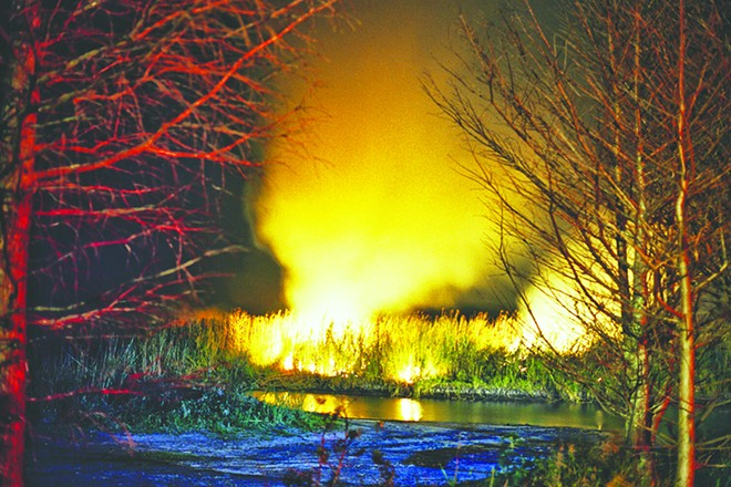 A brushfire burns near Highway 50 outside Titusville, March 15 - PHOTO BY JOEY ROULETTE