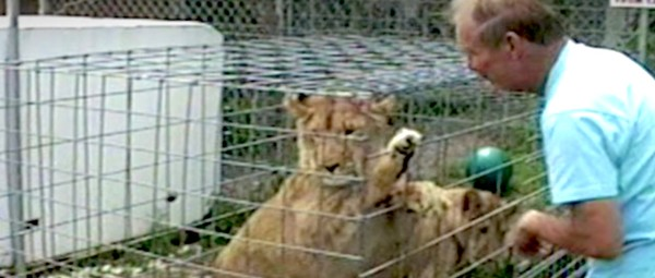 Florida sheriff needs your help with 'Tiger King' cold case