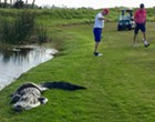 Florida golfers play through while a massive gator fights a python