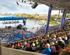 SeaWorld Orlando announces free admission for U.S. veterans and families