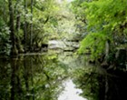 Florida congressional delegation continues their push for $200 million in Everglades restoration funding