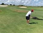 Central Florida golfer keeps golfing, despite 7-foot gator walking next to him