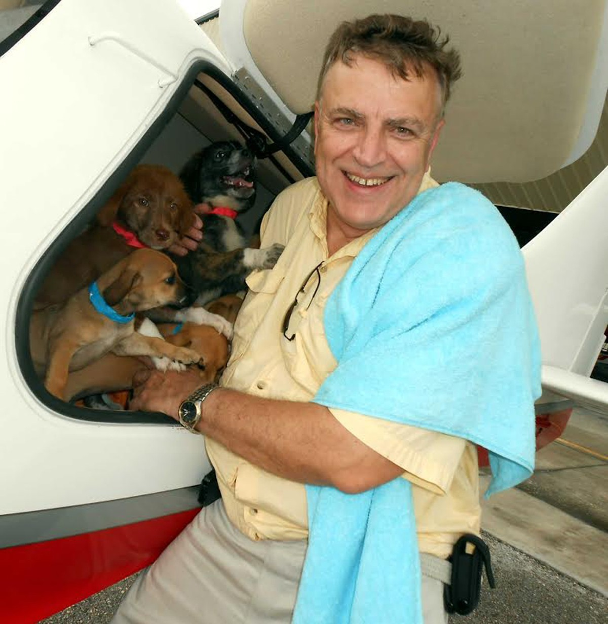 puppy-love-pilot-mike-young.jpg
