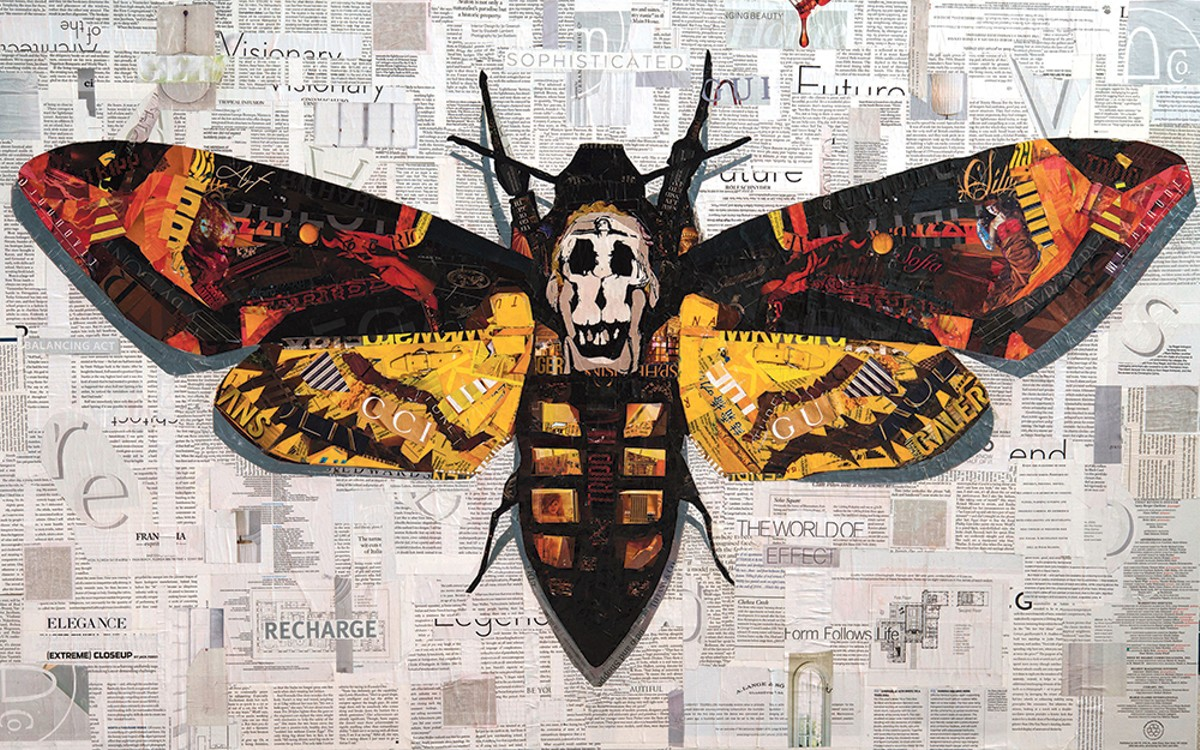 """Moth"" by Dominic DaSylva"