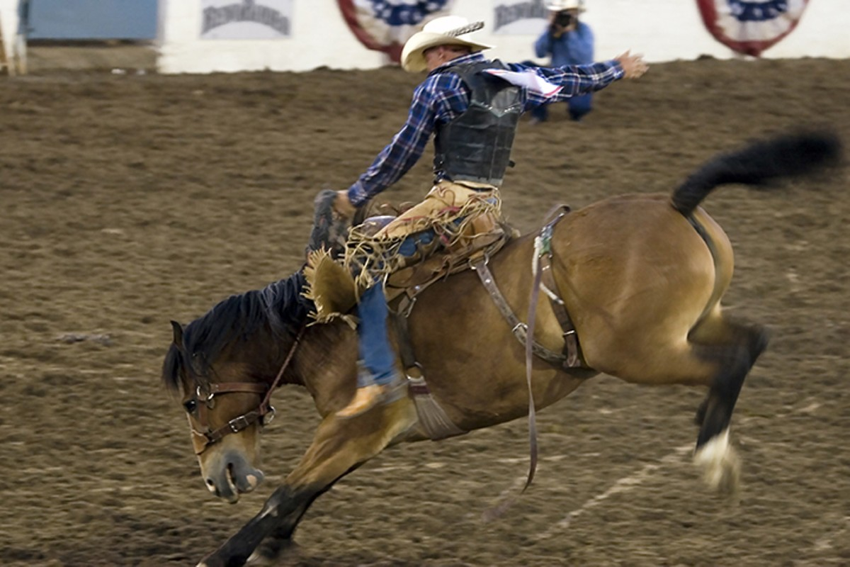gal_sel_rodeo_adobestock_1691335.jpeg.jpg