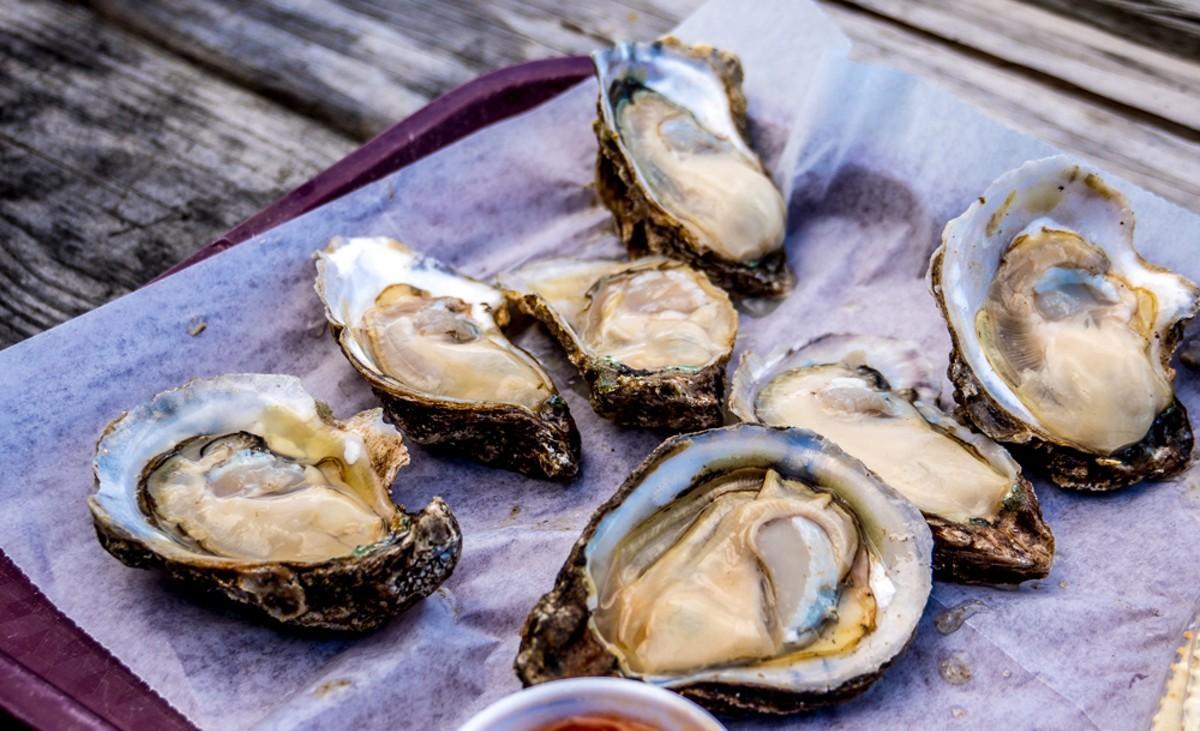 1000-oysters_adobestock_199011583.jpg