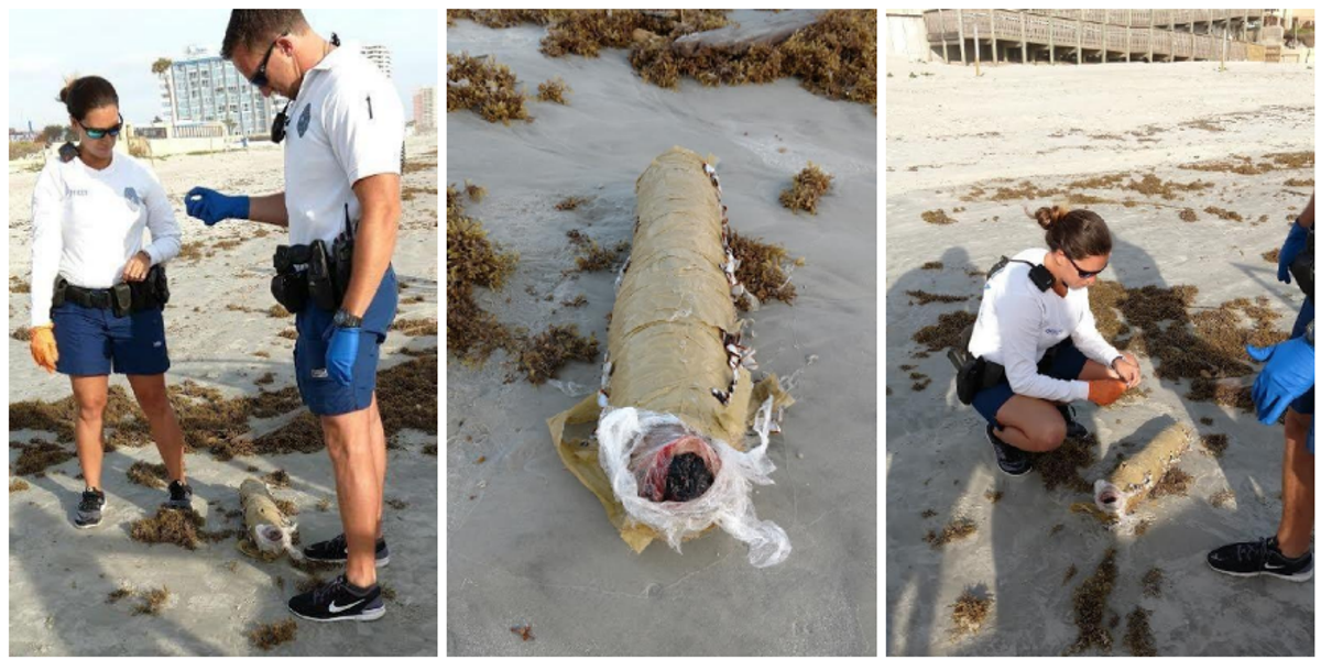 Jeff Stolowitz was on a morning beach walk when he found a curious, blunt-like package near the water's edge.