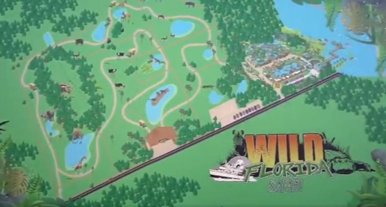 IMAGES VIA WILD FLORIDA