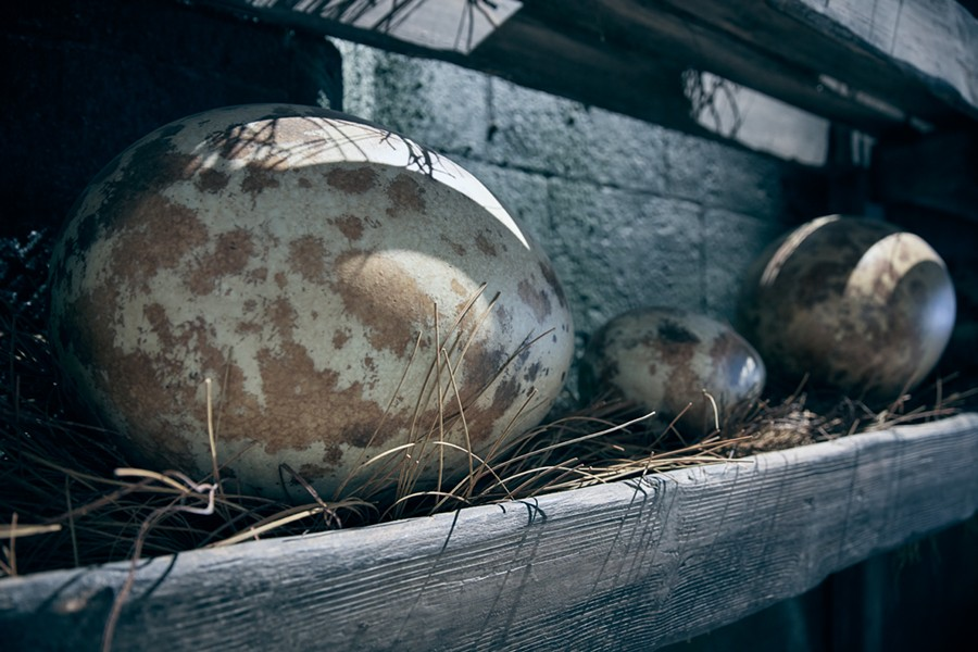 Guests will pass materials for a Care of Magical Creatures class in the ride's queue, including dragon eggs. - VIA UNIVERSAL ORLANDO