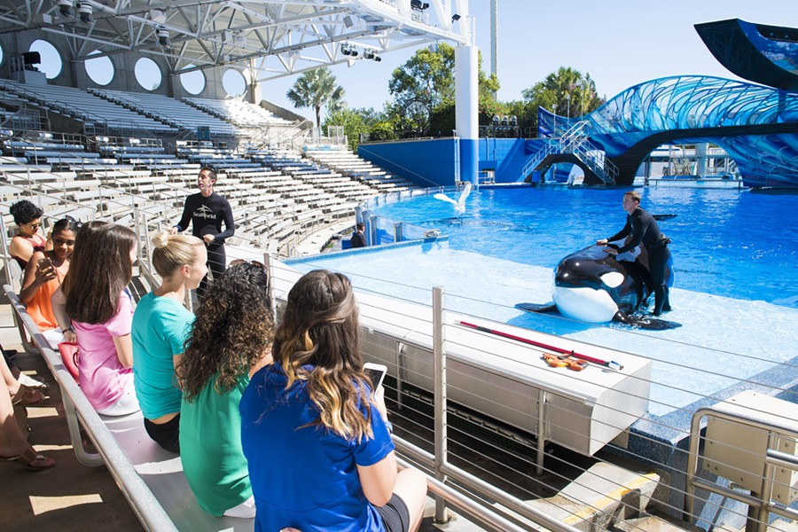 PHOTO VIA SEAWORLD ENTERTAINMENT, INC.