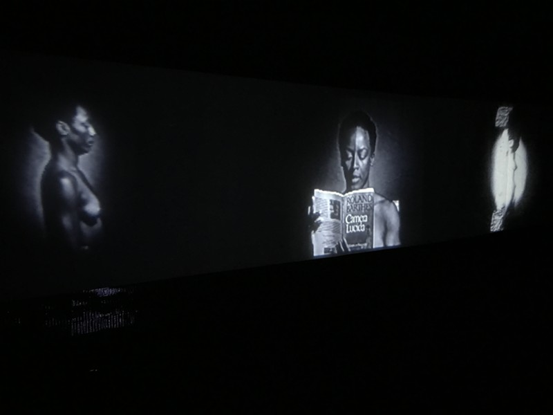 "Christopher Harris film ""A Willing Suspension of Disbelief"" at Guava Tree Gallery"