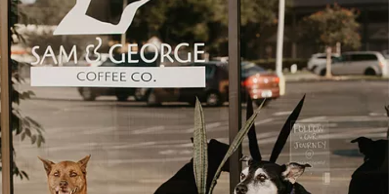 An adoptable dog cafe has plans to open later this year.