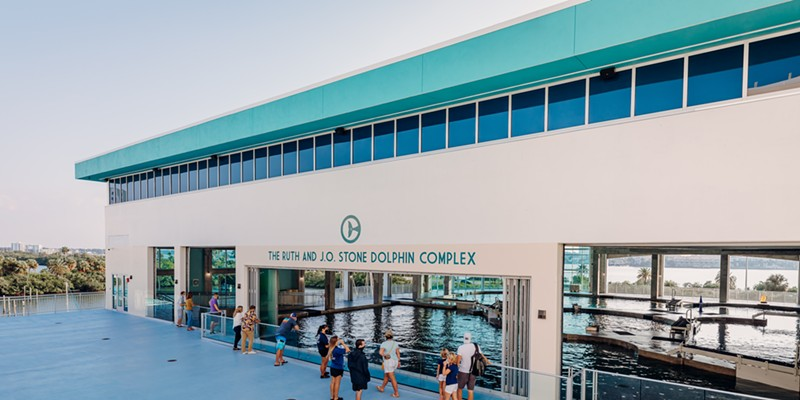 The dolphin complex gives guests views into the dolphin facilities and an elevated view of the aquarium's natural intercoastal surroundings.