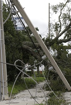 As Florida's hurricane season approaches, tree trimming seen as key