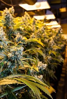 Florida judge weighs ban on patients smoking medical marijuana