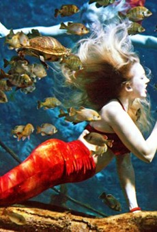 After 71 years, the famed Weeki Wachee mermaids are visiting Orlando (8)