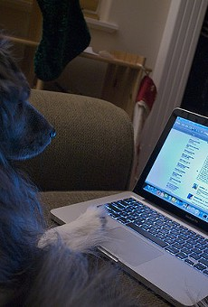 New website matches pets with potential owners based on personality