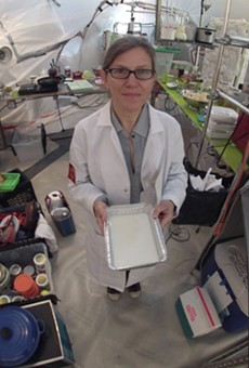 """Beyond Dippin' Dots: Artist Heidi Neilson talks about her """"Menu for Mars"""" at UCF downtown Friday"""