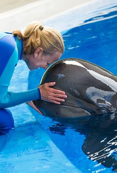 SeaWorld Orlando says they will increase minimum base pay for employees
