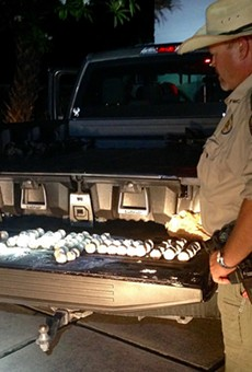 Florida man arrested for stealing 107 sea turtle eggs