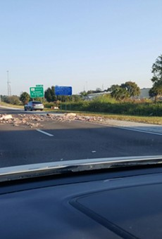 Pig carcasses cause brutal  traffic jam on I-75