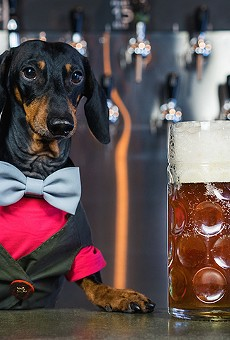 Bring your pooch to your favorite bars for Mills 50's Dog Day Afternoon Pup Crawl