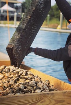 Seafood thieves steal 17,000 oysters from Florida fishery