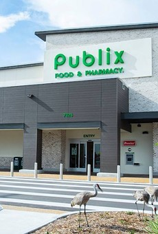 When an elderly man's dog was hit by a car, employees at a Florida Publix got him a new one