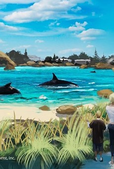 An artist's rendering of the canceled Blue World orca habitat at SeaWorld