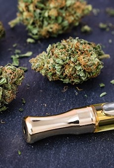 Recreational marijuana legalization will not be on the 2020 Florida ballot