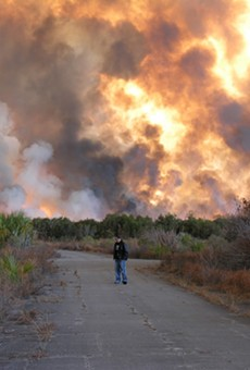 Brush fire in Palm Bay, Florida