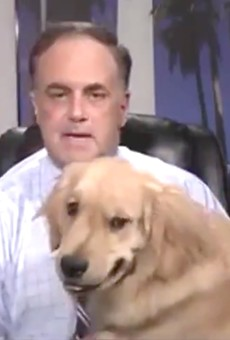 Florida weatherman's dog just delivered a perfect forecast