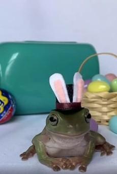 University of Central Florida student's tree frog wins Cadbury Bunny contest