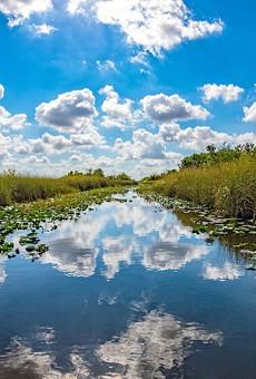 Florida Senate's proposed $6.1 billion spending plan includes sea-level rise mitigation, Everglades protection
