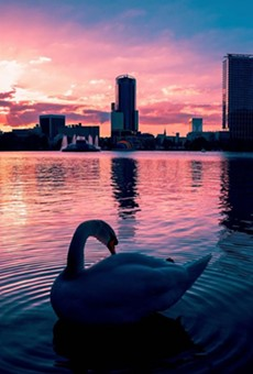 Lake Eola is in need of a facelift. Here's what the person in charge of revitalizing the iconic park has to say about it (3)